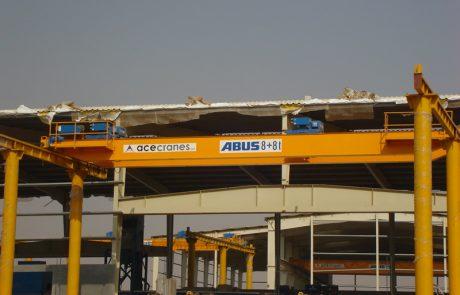 Cranes in Paper factories7